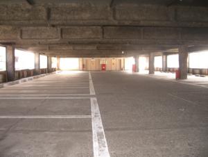板橋シティマラソン,注意点,駐車場,ボランティア,受付