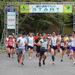 掛川新茶マラソン,2017,日程,エントリー,コース,