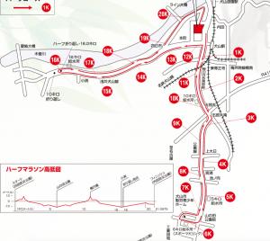 読売犬山ハーフマラソン,2017,日程,エントリー,開始,コース