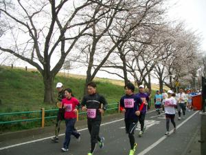 熊谷さくらマラソン,2017,日程,エントリー,コース