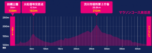 前橋・渋川シティマラソン,2017,日程,エントリー,コース