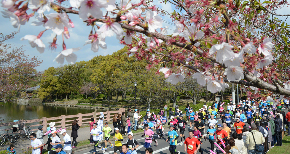 さが桜マラソン2018 日程・エン...