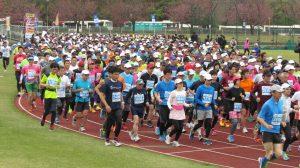 加賀温泉郷マラソン,2017,石川県,日程,エントリー,コース,まとめ