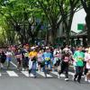 仙台国際ハーフマラソン2017 日程・エントリー開始日・コースまとめ!